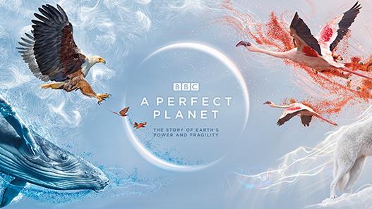 a-perfect-planet-bbc-earth-david-attenborough-video-trailer-november-23-2020